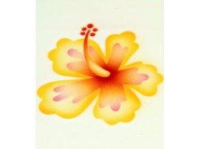 13391 stencil dekoracni ibisek 2 kvety 3 krokova