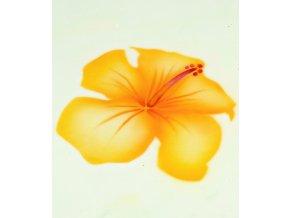 13409 stencil dekoracni lilie kvet 5ti krokova