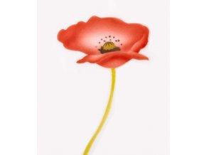 13484 stencil dekoracni vlci mak 2 kvety a poupe 3 krokova