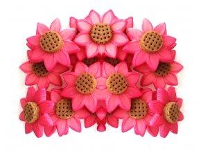 Jedlé květy z modelovací hmoty: TŘAPATKA (ECHINACEA) 20ks