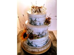 Textura na dort: BŘÍZA