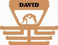 Věšák na medaile s motivem wrestling