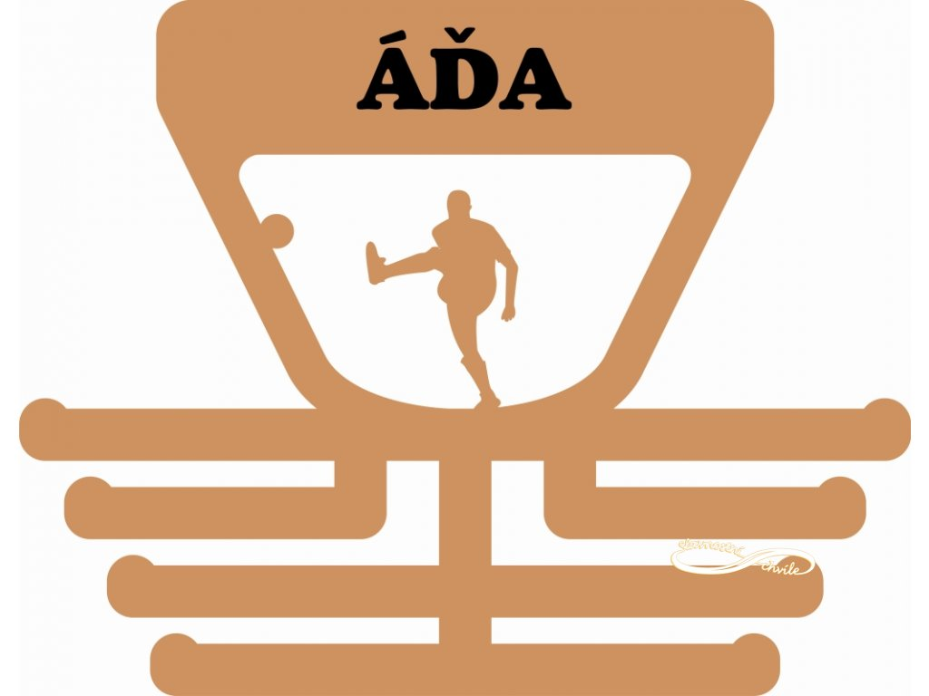 držák na medaile pro hráče nohejbalu