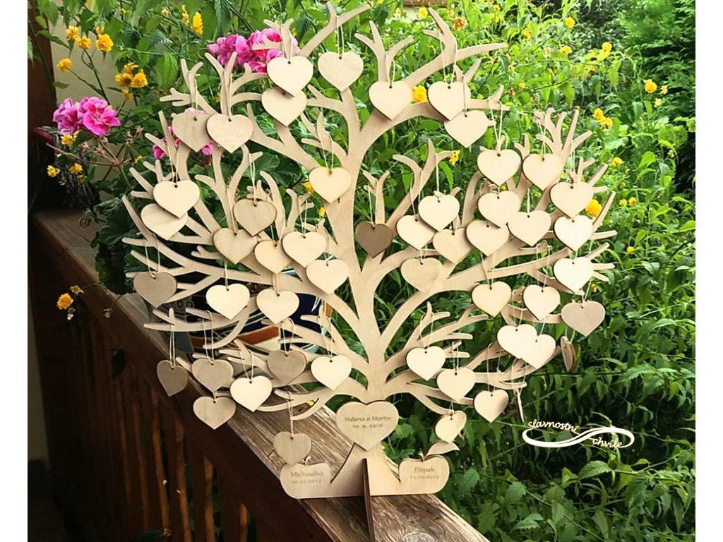Strom Lasky Se Srdicky Slavnostni Chvile