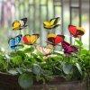 47906 1 zapich do kvetinace 24 ks motyl