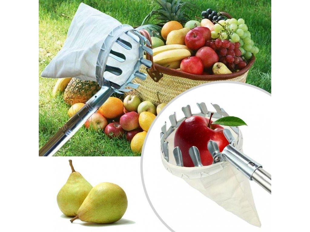 41945 cesacek na ovoce