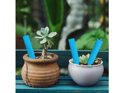 51608 popisovaci stitky k rostlinam modra