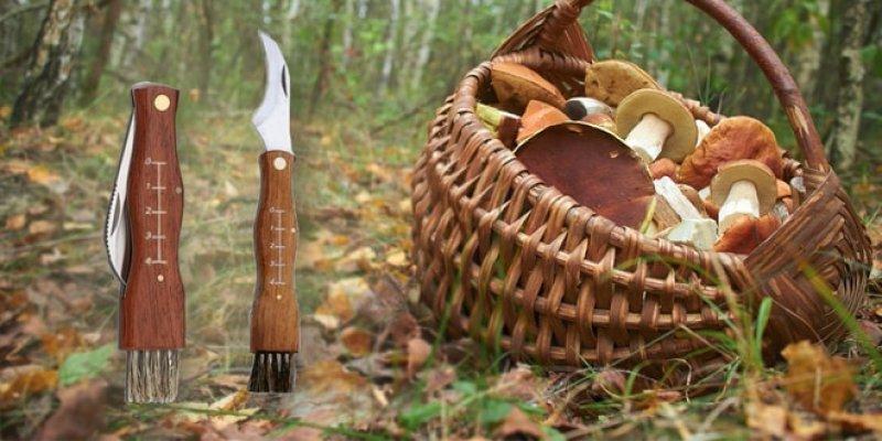 UD Nôž pre hubárov
