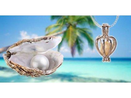perla prani