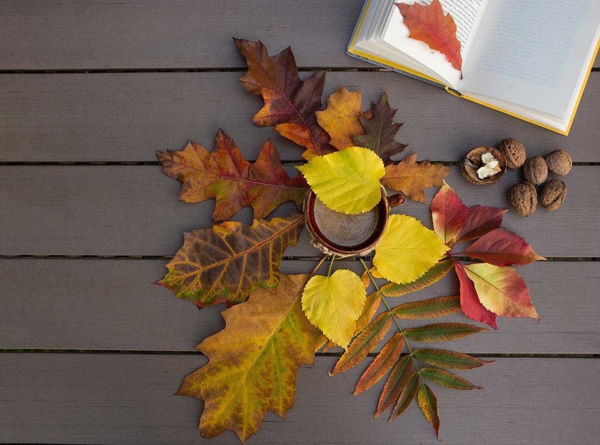 5 tipů pro správný podzimní detox