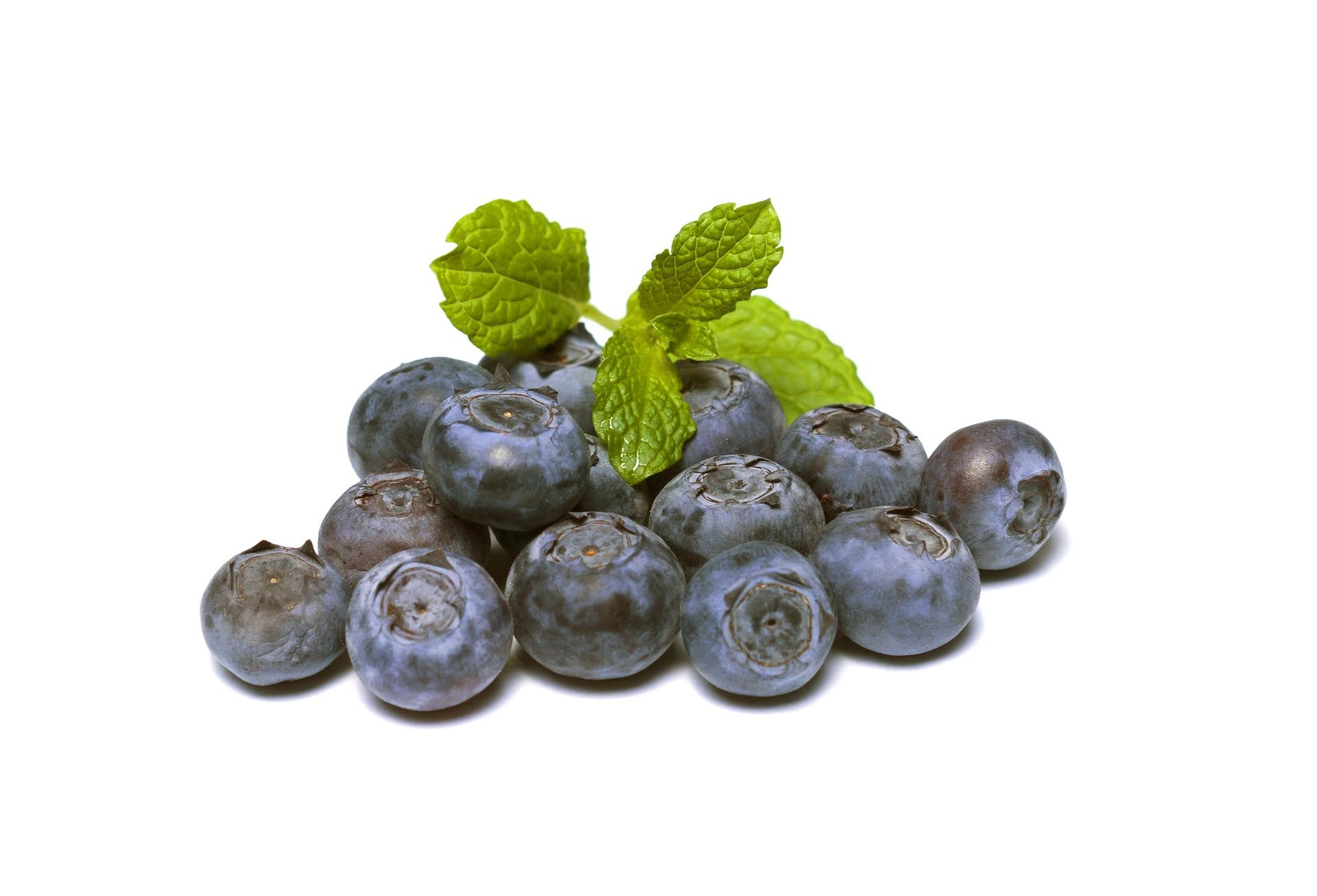 blueberries-894839_1920