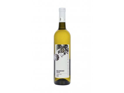 Cintavý a Pisarčík - Rulandské biele NZ 2019 - Bílé víno - Pozdní sběr
