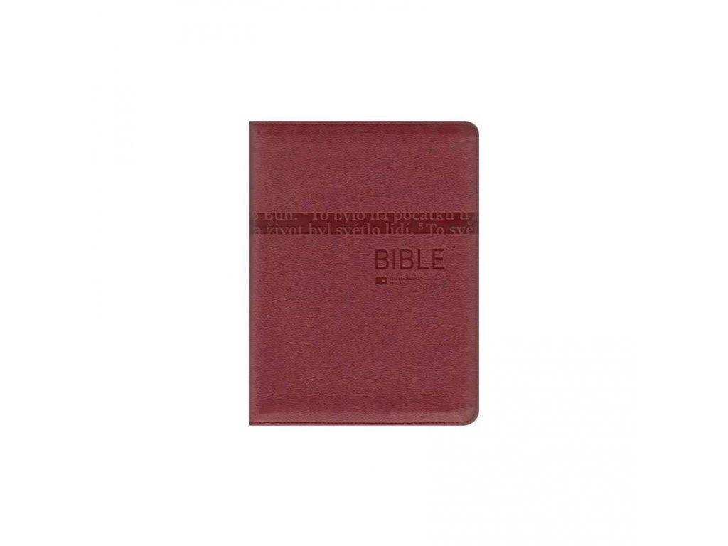485 Bible velka vinova 9788075450449 1