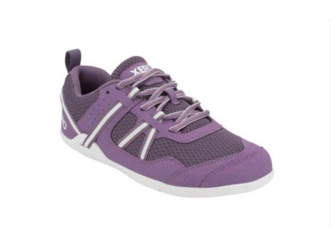xero prio youth violet
