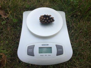Kuchyňská váha Sencor SKS 4001 WH