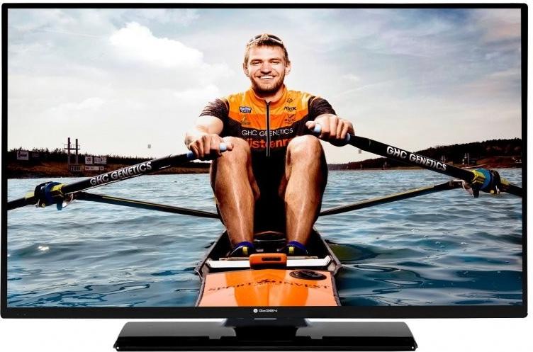 GoGEN Televize TVH 24N384 STWEB LED