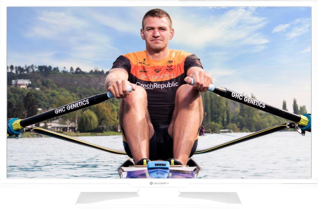 Televize GoGEN TVH 24N540