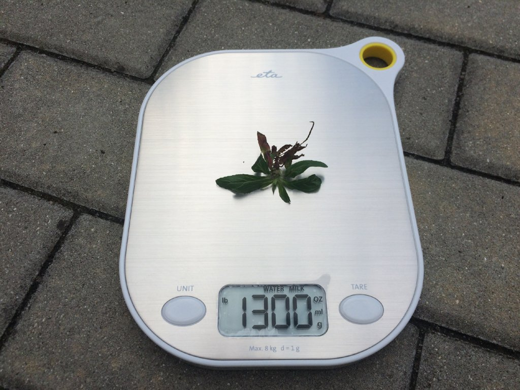 Váha kuchyňská ETA GRAMI 3777 90000