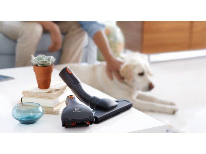 Animal Care Tool Kit 1