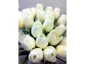 tulip béžová hotová