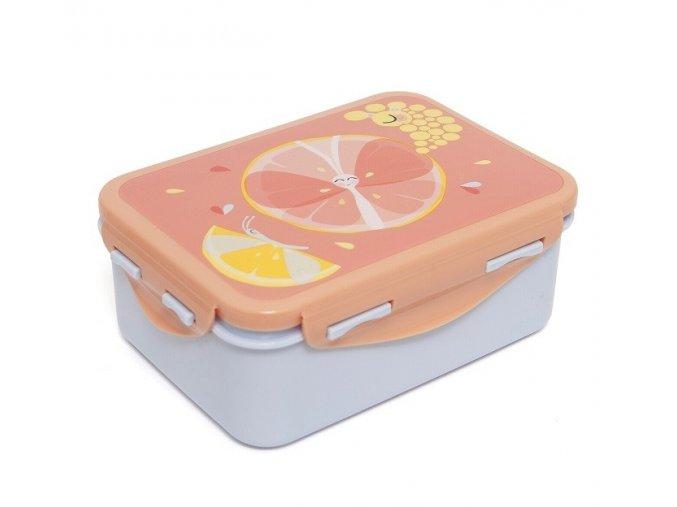 lunchbox flies lb16 1