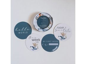 Oboustranné milníkové karty Whale/Azure