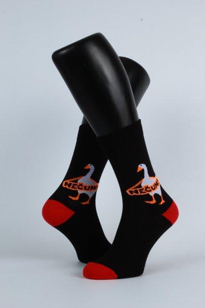 Husa ponožky (1)