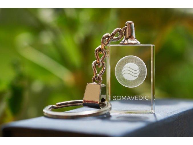 Somavedic Portable1