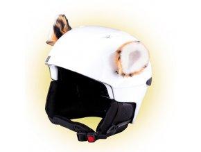 uši na helmu Tygřík