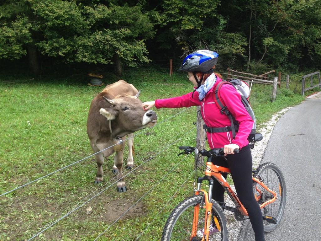 Slovinsko_cyklostezky