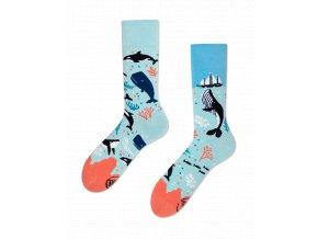 Many Mornings ponožky Ocean Life DÁMSKÉ
