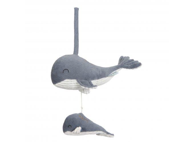 4801 Hrající velryba blue