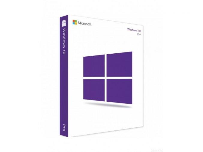 microsoft windows 10 professional pouzity