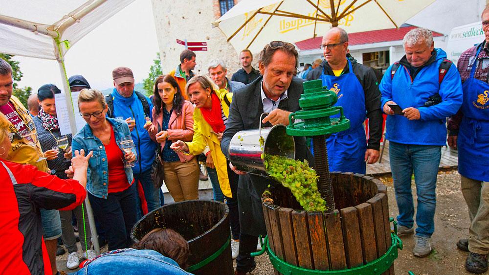 Navštivte nás na Pálavském vinobraní