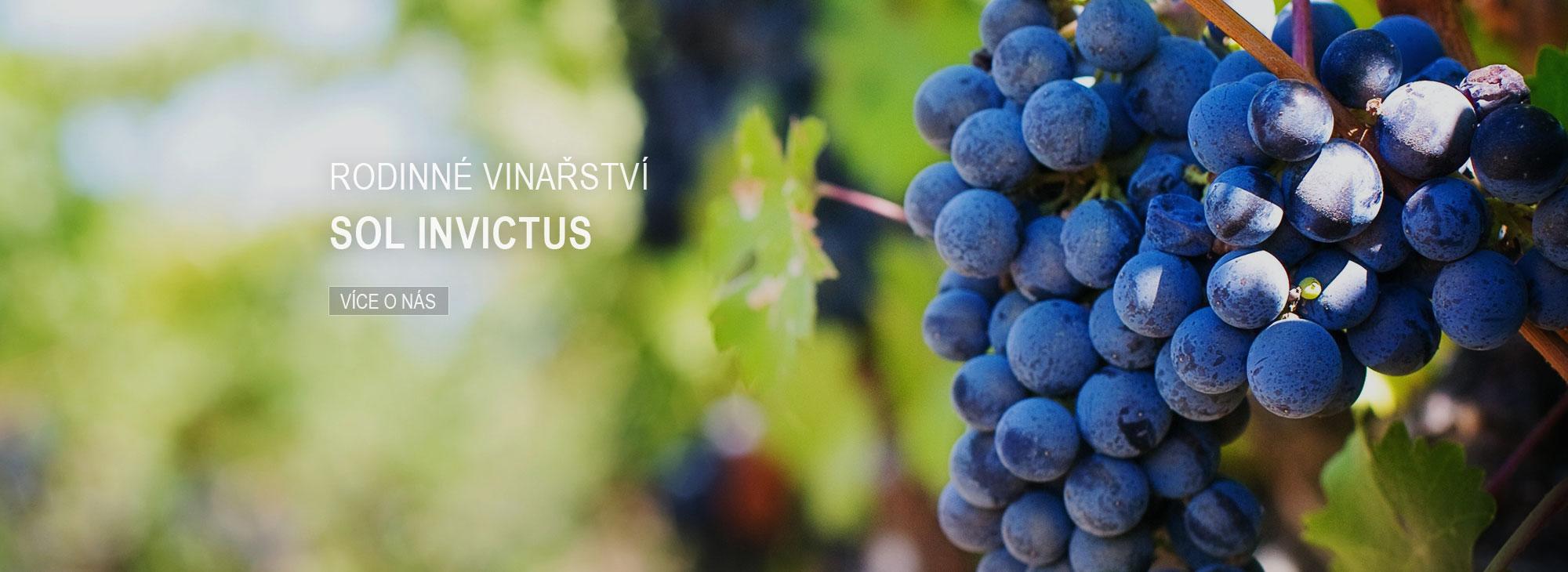 Rodinné vinařství SOL INVICTUS