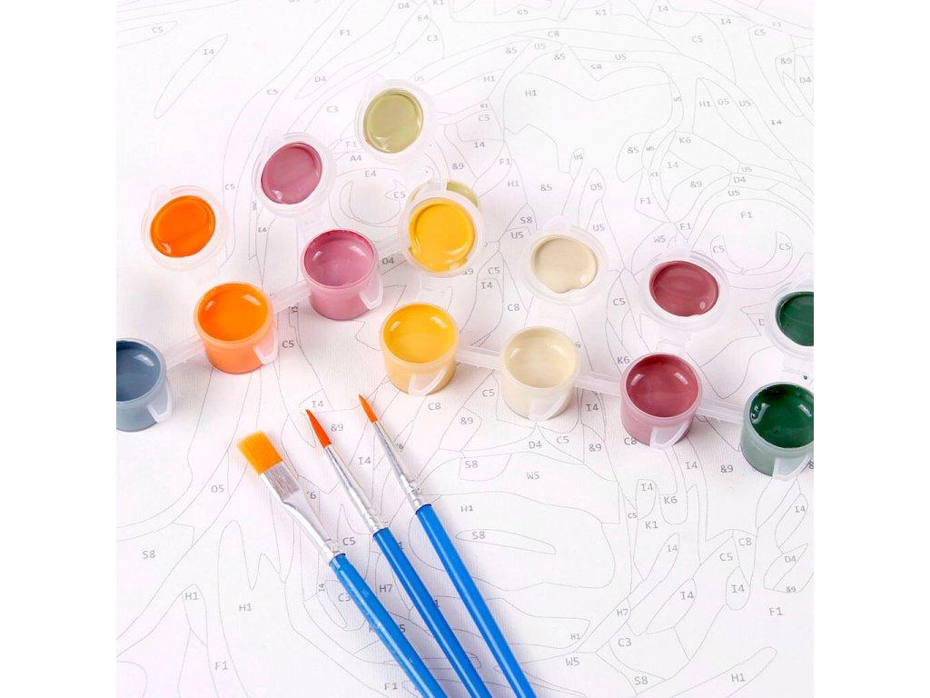 zuty Malování podle čísel - DELFÍNI A ZÁPAD SLUNCE Rozměr: 40x50 cm, Rámování: vypnuté plátno na rám