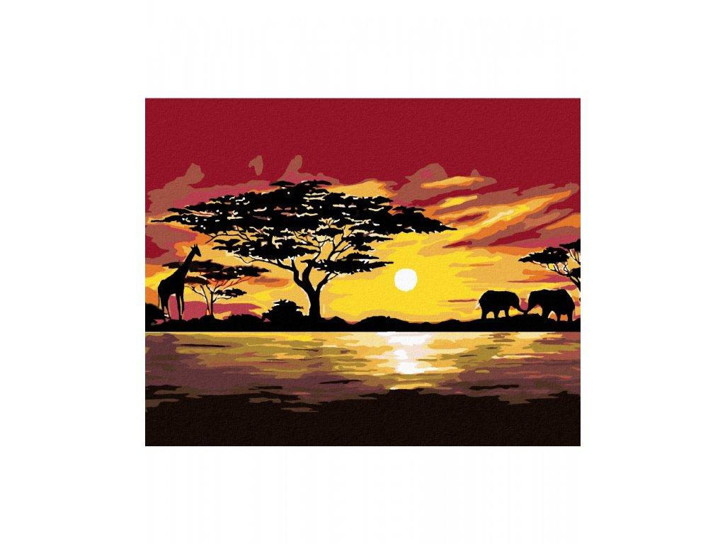 zuty Malování podle čísel - AFRIKA ŽIRAFA A SLONI Rozměr: 40x50 cm, Rámování: vypnuté plátno na rám