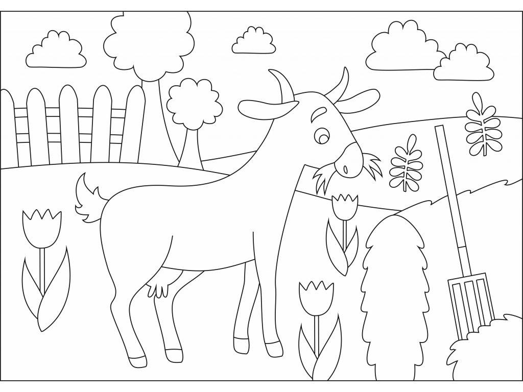 Šablona Kozička na farmě