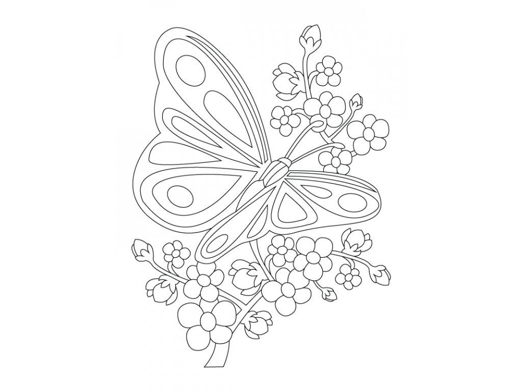 Šablona Větvička s motýlkem