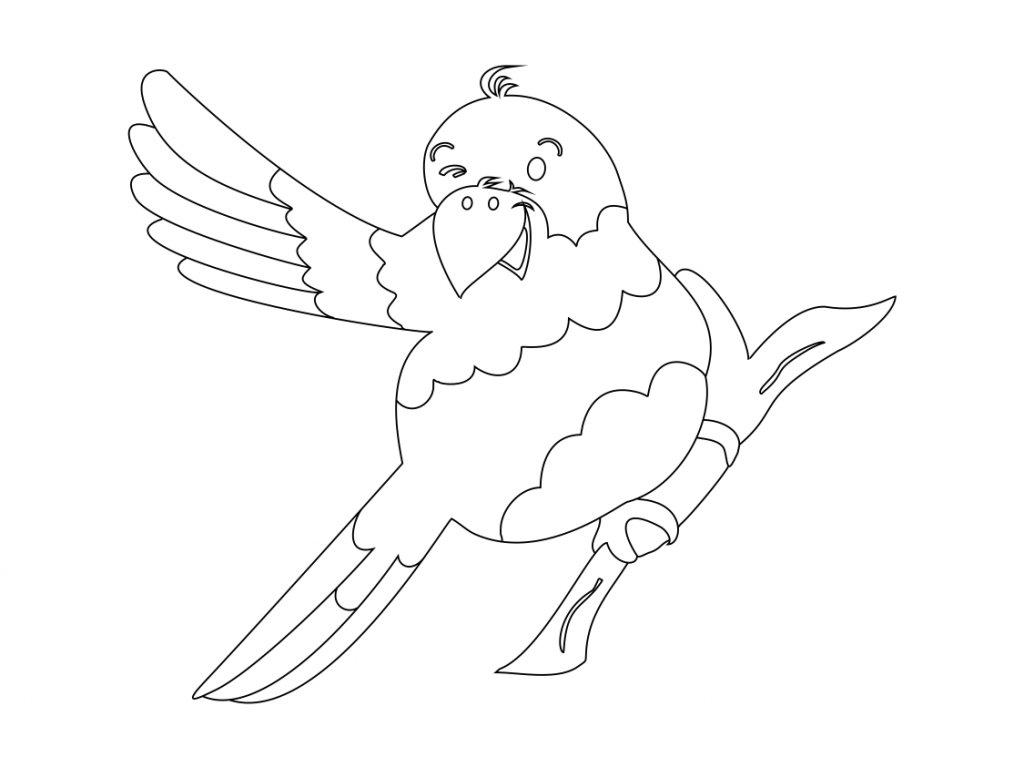 Šablona Papoušek