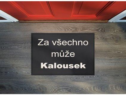Rohožka Kalousek 40x60 cm - 40x60 cm