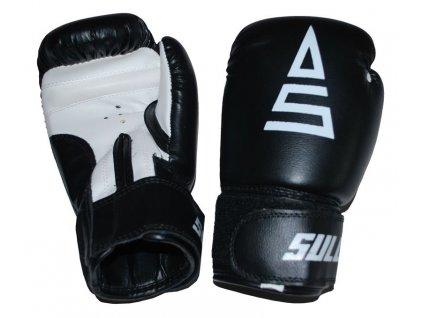 Box rukavice SULOV PVC, černé