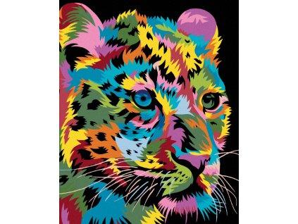 zuty Malování podle čísel - BAREVNÝ LEOPARD Rozměr: 40x50 cm, Rámování: vypnuté plátno na rám
