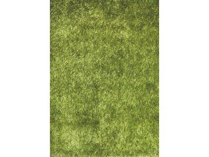 AKCE: Kusový koberec LILOU Green - 200x290 cm