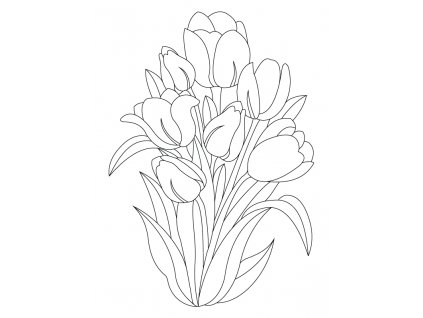 Šablona Tulipány