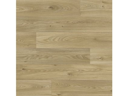 Beaulieu International Group PVC podlaha Livitex 2623 - Rozměr na míru cm