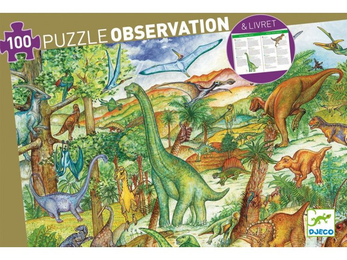 dj07424 dinosaurs with booklet 1000x1000
