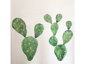 kaktusy na zeď2 2