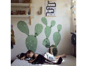 kaktusy na zeď1 1