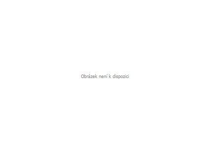vak na lyže ISG délka max 180 cm černý